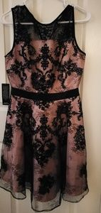 Gorgeous tea pink dress with black lace details